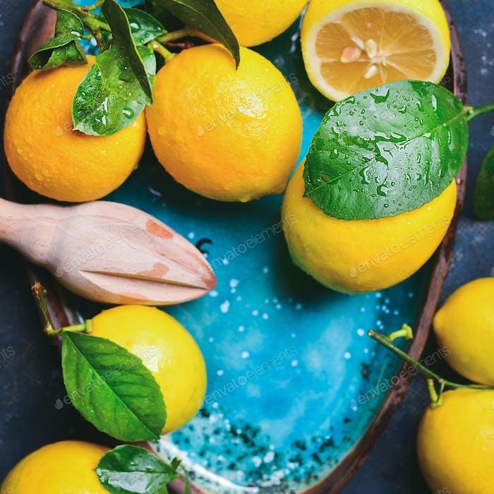 Freshly picked lemons with leaves in blue plate, copy space