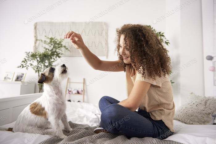 Beautiful woman playing with dog on the bed