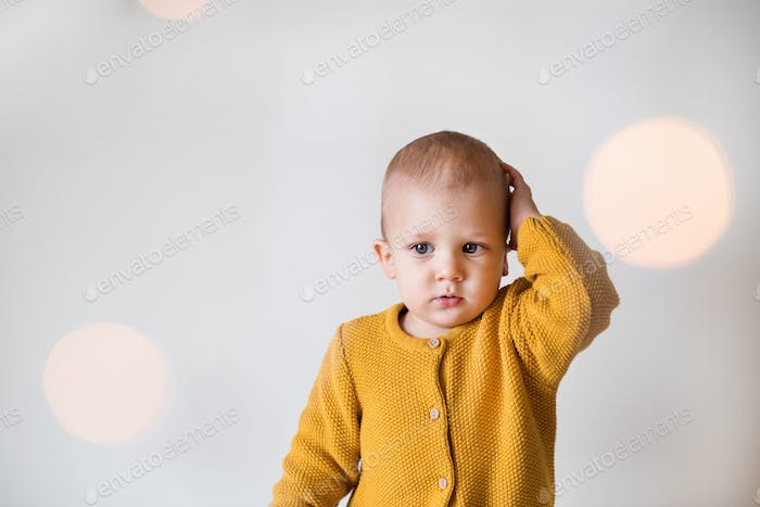 Portrait of a cute toddler boy.