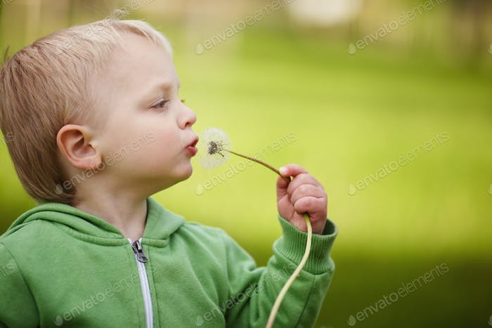 cute little boy with dandelion