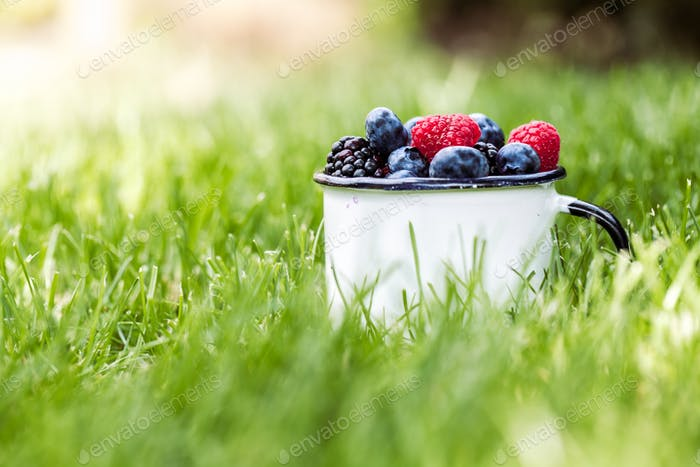 Summer berry fruits in green grass background. Wholesome healthy food