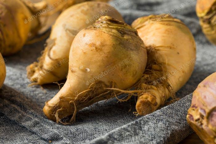 Raw Organic Brown Rutabaga Root