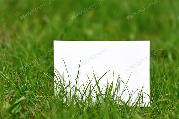Blank paper on green grass