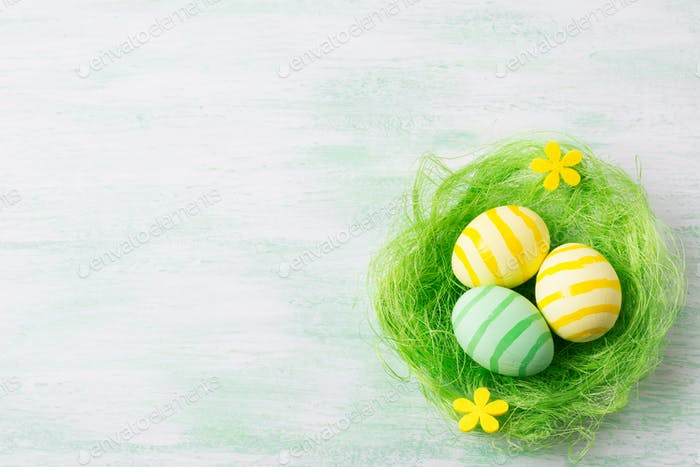 Easter greeting with eggs and yellow flowers in the nest