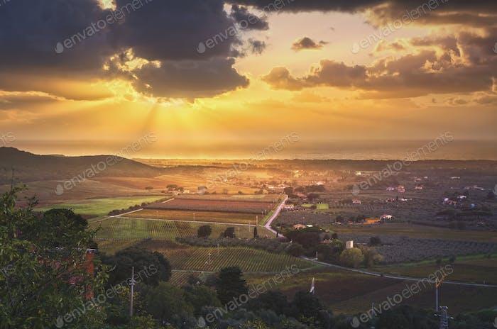 Bolgheri und Castagneto Weinberg Luftpanorama auf Sonnenuntergang. Stute