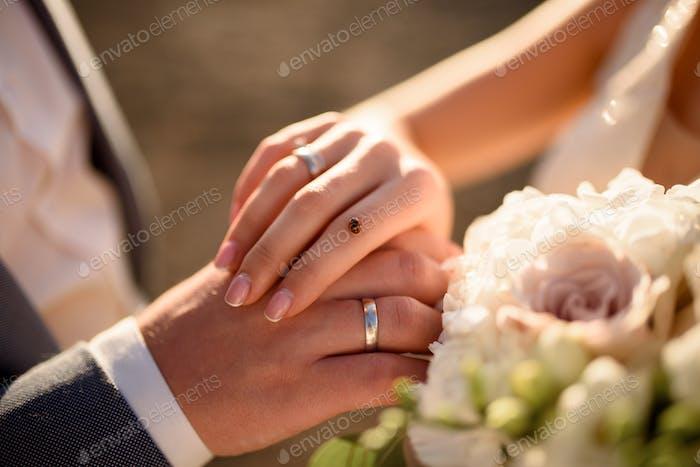 Ladybug sat on the bride's hand. Close-up shot.