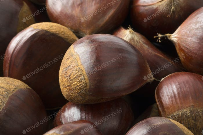 Fresh sweet chestnuts close up