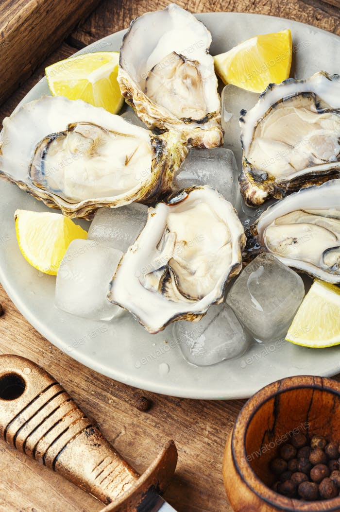 Raw opened oyster