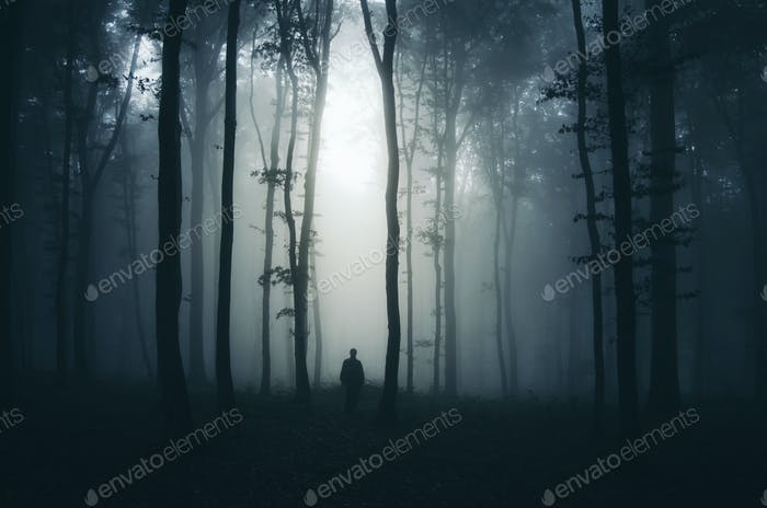 Silhouette of man in mysterious dark haunted forest at night