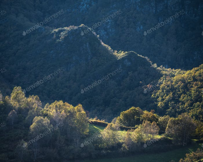 Limestone hills emerge between native deciduous forest