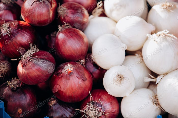 Lots of red and white onions. Background of red and white onions. Raw red and white onions