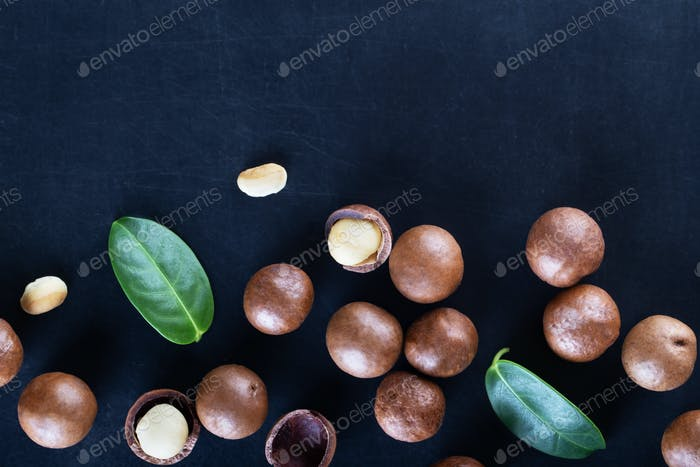 Australian macadamia nuts and green leaves on black background