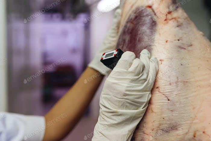 Kontrolle der Fleischqualität in der Metzgerei.