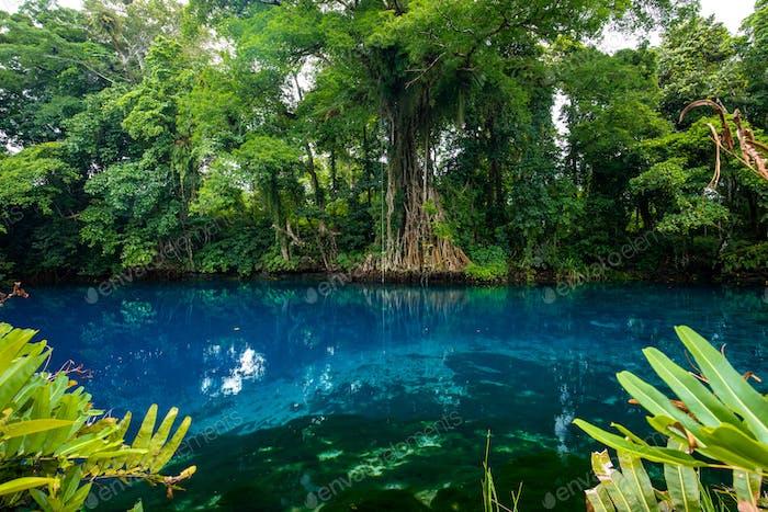Matevulu Blue Hole, Espiritu Santa Island, Vanuatu, tourist dest