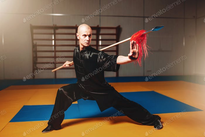 Wushu master training with spear, martial arts
