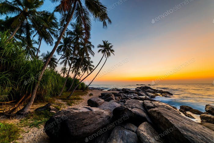 Beautiful sunset on the beach with palms on a Philippines