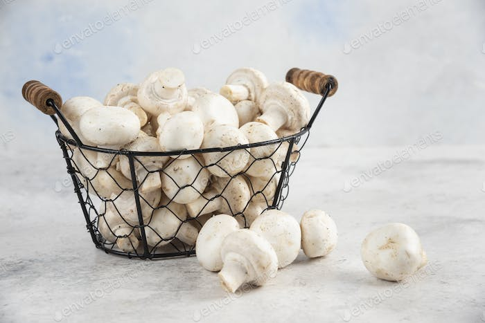 White mushrooms in a metallic tray on marble background