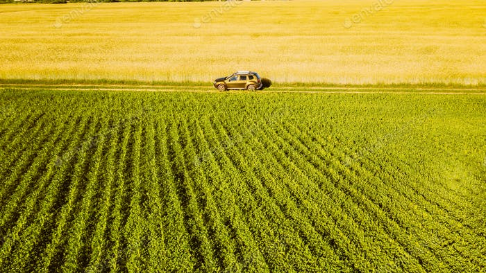 Aerial View Of Car SUV Parked Near Countryside Road In Spring Field Rural Landscape. Car Between