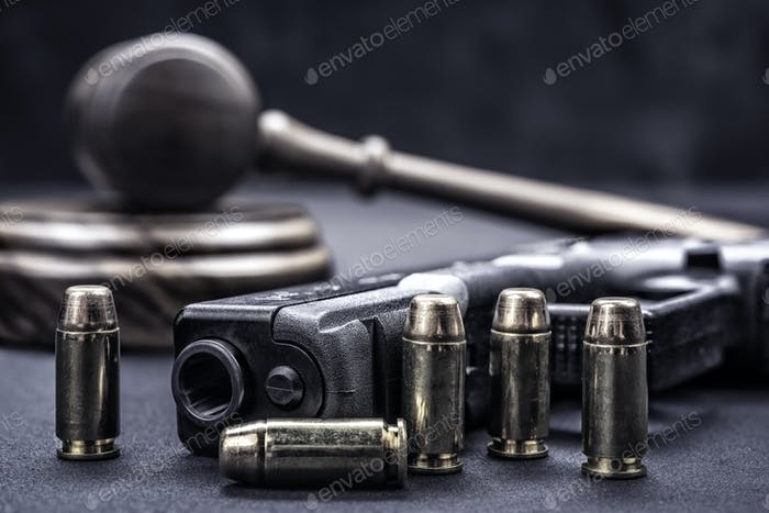 Gavel and gun rights