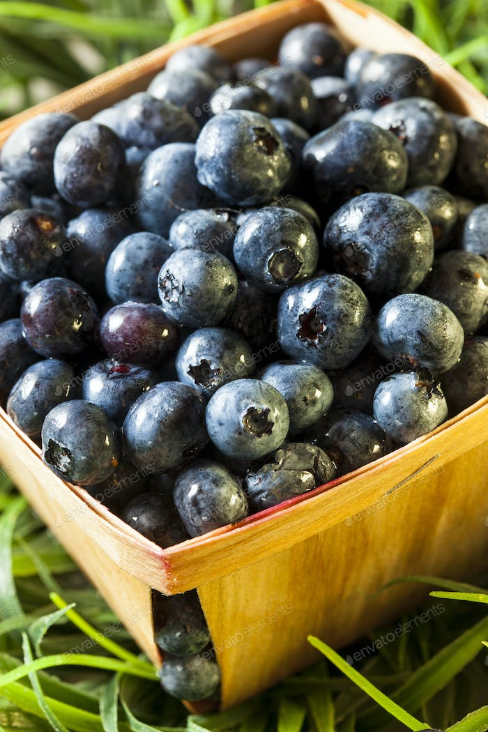 Group of Organic Blueberries