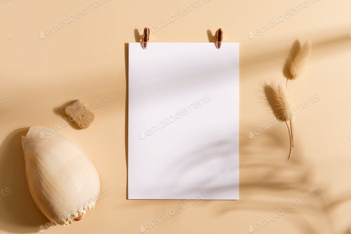 Mock-up paper card attached pegs, seashell with plant shadow