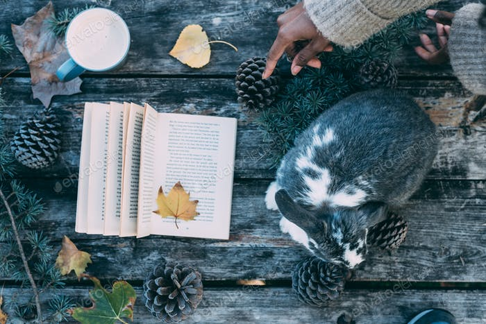 Woman hands decorating a table with a cute bunny pet and Book on