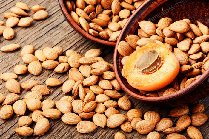 Dry apricot seeds in bowl