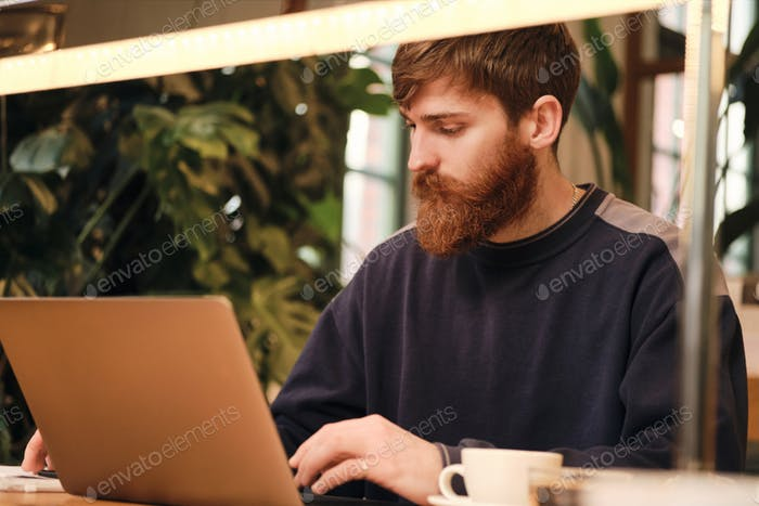 Young attractive man confidently working on laptop during coffee break in cafe
