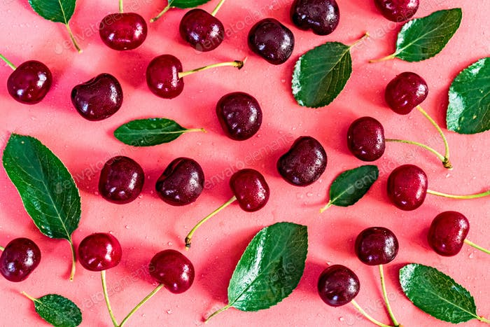 Sweet ripe cherries and leaves on pink background
