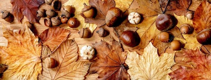 Осенний сезонный фон