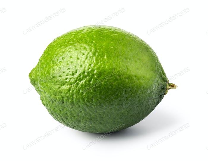 lime citrus fruit