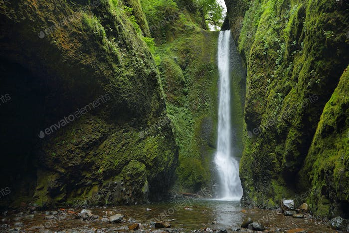 Lower falls in Oneonta Gorge. Columbia River Gorge
