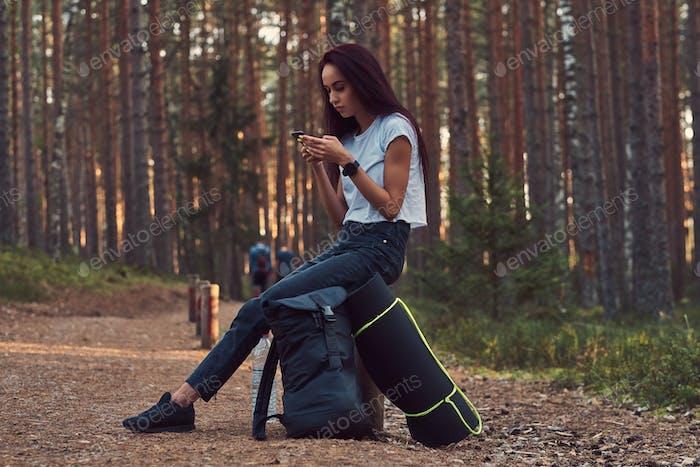 Touristenmädchen mit einem Smartphone, während auf einem Holzpfosten in einem schönen Herbstwald sitzt.