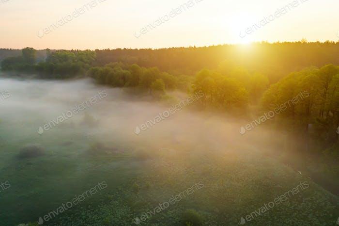 Schöne neblige Morgendämmerung im Frühjahr auf dem Fluss.