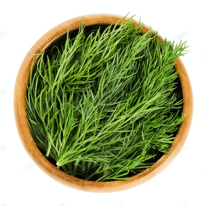 Fresh dill fronds in wooden bowl, also dill weed