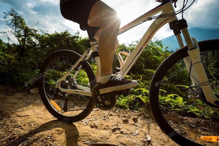 Radfahren auf Sonnenaufgang Sommer Waldweg