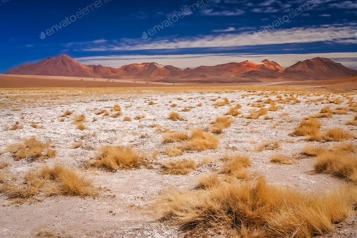 Dry and desolate landscape in southern Altiplano