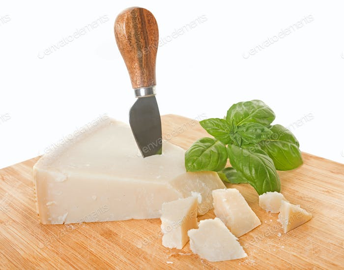 parmesan in studio