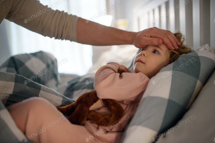Father checking forehead of small sick toddler daughter indoors at home