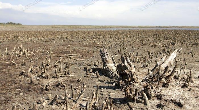 Concepto de calentamiento global y contaminación