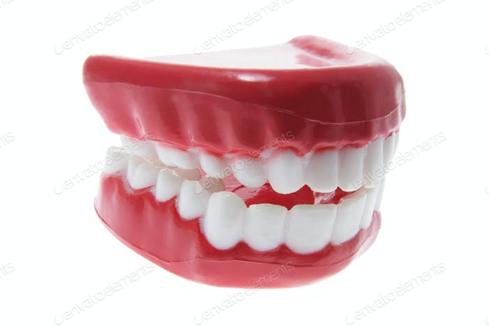 Artificial Dentures