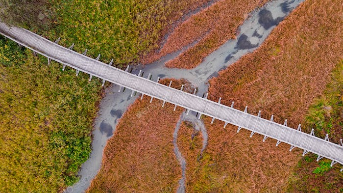 Foot Bridge at Nature Reserve in Autumnal Colors. Top Down Abstr