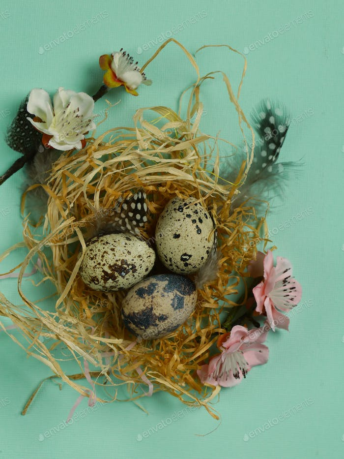 Easter with Quail Eggs