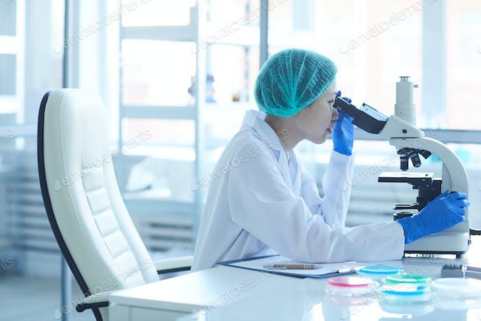 Doctor examining the analysis
