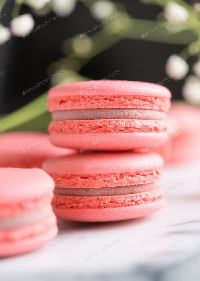 Stack of coral cakes macarons or macaroons on white marble with flowers besides.