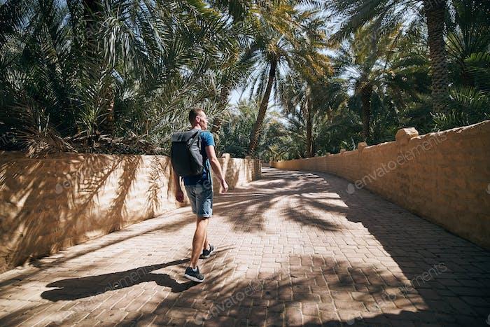 Solo traveler in desert oasis