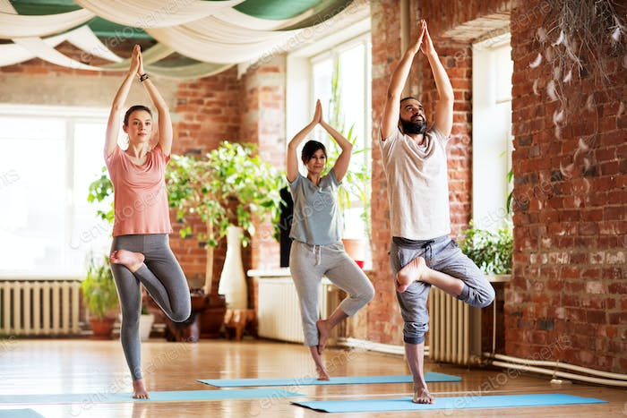 group of people doing yoga tree pose at studio