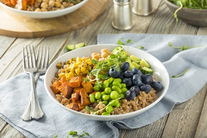 Raw Organic Healthy Buddha Bowl
