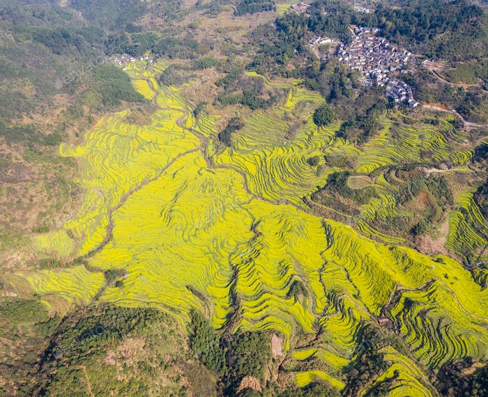 Thumbnail for aerial view of wuyuan huangling village in spring