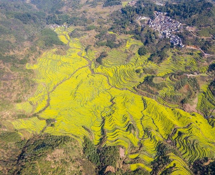 aerial view of wuyuan huangling village in spring